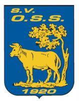 OSS'20 JO15-1